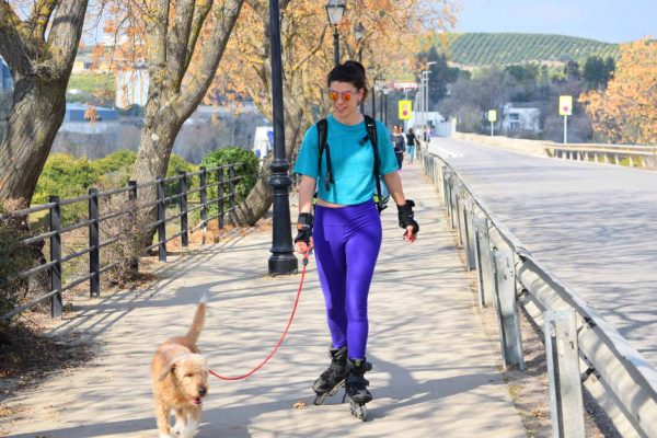 Patinar con tu perro mTraining entrenar con tu mascota
