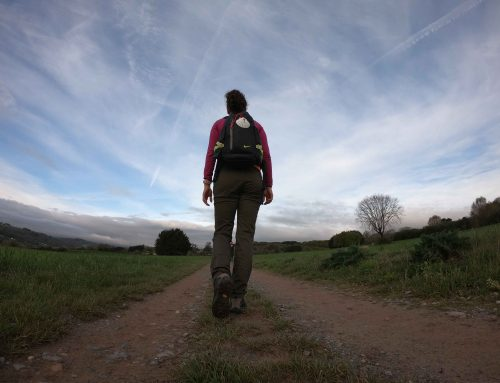 Camino de Santiago: SARRIÁ – PORTOMARÍN
